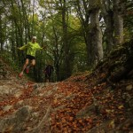 HOW TO GO ABOUT HAVING YOUR FIRST TRAIL RUN