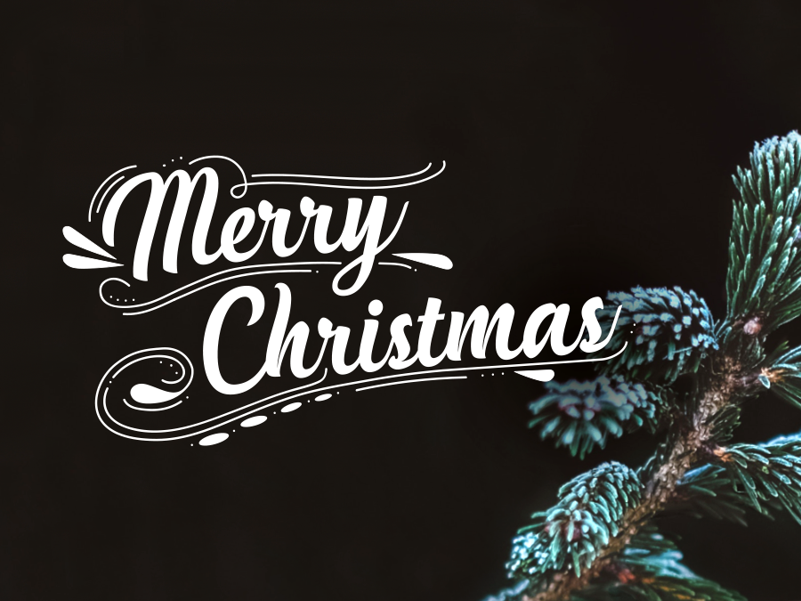 we-want-to-wish-you-and-your-family-a-merry-christmas