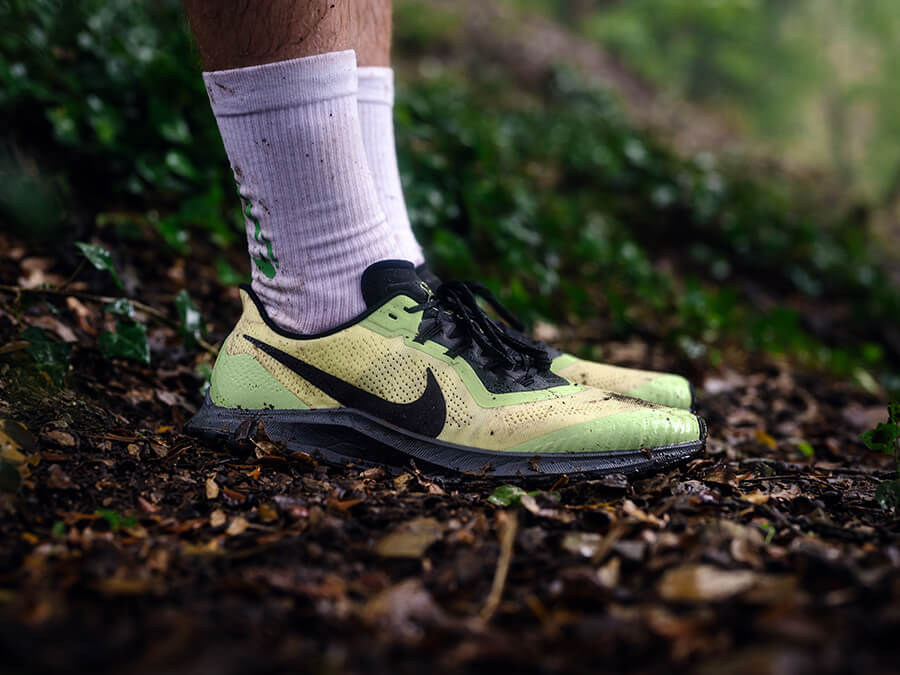 Nike Pegasus Trailrunning shoes in test