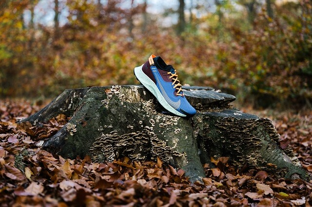 The Nike Pegasus Trail 2 GORE-TEX is the all-rounder running shoe among the Nike trail running shoes.