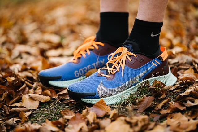 With its GORE-TEX upper, the Nike Pegasus Trail 2 GTX is also a convincing choice for the cold season in trail running 2020.