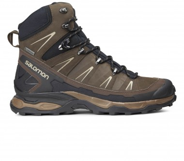 Salomon - X Ultra Trek GTX men's trekking shoes (brown/black)