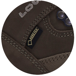 Lowa - Renegade GTX Mid women's multi-function shoes (brown)