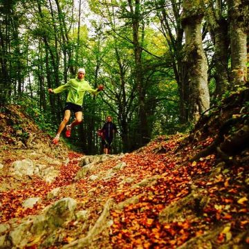 How to go about having your first trail run???=> www.keller-sports.com/guide #kellersports ...